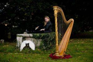 harpist-sussex